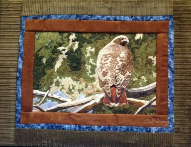 hawk full sized quilt 2